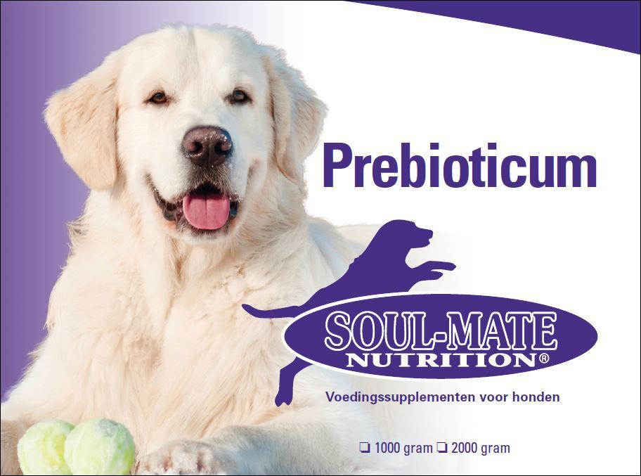 prebioticum